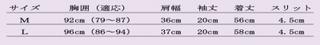 ギザのサイズ表.jpg